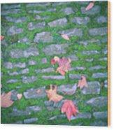 Cobblestone Path Wood Print