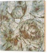 Cobblestoned Disrobed  Id 16098-000717-06400 Wood Print