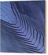 Cobweb Wood Print