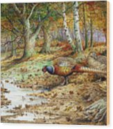 Cock Pheasant And Sulphur Tuft Fungi Wood Print by Carl Donner