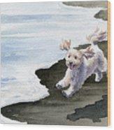 Cockapoo At The Beach Wood Print