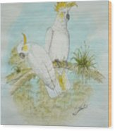 Cockatoos Wood Print