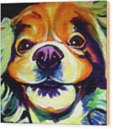 Cocker Spaniel - Cheese Wood Print by Alicia VanNoy Call
