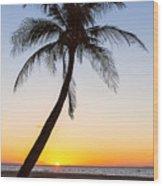 Coco Mo Tropical Sunrise Wood Print