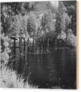 Cocolala Creek Slough Wood Print