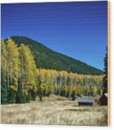 Coconino National Forest Wood Print