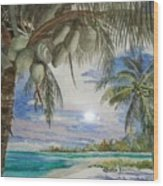 Coconut Beach Wood Print