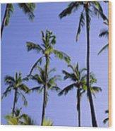 Coconut Grove At Wailua Wood Print