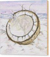 Coconut Island Wood Print