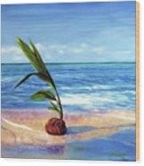 Coconut On Beach Wood Print