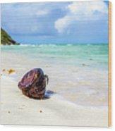 Coconut On The Beach Wood Print