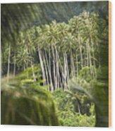 Coconut Palm Trees Wood Print