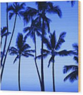 Coconut Palms At Dawn Wood Print