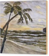 Coconut Palms On Cloudy Day Wood Print