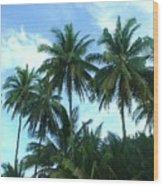 Coconut Trees Wood Print