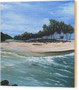 Cocos Bay Trinidad Wood Print
