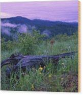 Coeur D'alene Mountains Wood Print