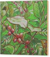 Coffee Cherries Wood Print
