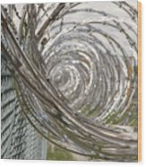 Coiled Razor Wire On Fence Wood Print