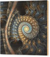 Coiled Spirals Wood Print