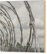 Coils Of Razor Wire On Fence Wood Print