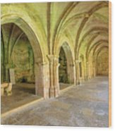 Coimbra Old Cathedral Wood Print
