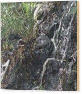 Coki Waterfall Wood Print