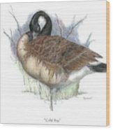 Cold Bay Wood Print