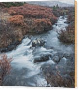 Cold Creek In Autumn Wood Print