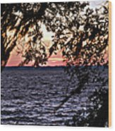 Cold Florida Sunset Wood Print