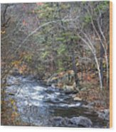 Cold Mountain Stream Wood Print