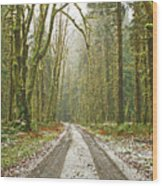 Cold Paths Wood Print