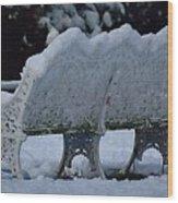 Cold Seat Wood Print