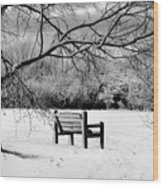 Cold Seat Wood Print