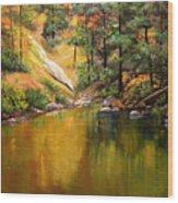 Cold Water Creek II Wood Print