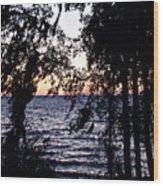 Cold Winter Sunset Wood Print