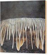 Coldwater Creek Cave Wood Print