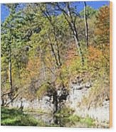Coldwater Trout Stream Wood Print