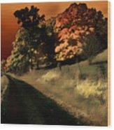 Coles County Wood Print