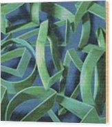 Coil Clipps Wood Print