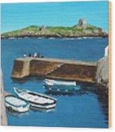 Coliemore Harbour, Dalkey Wood Print