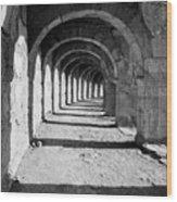 Coliseum Corridor Wood Print