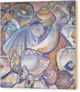 Collage of Shells Wood Print