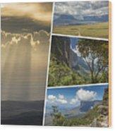 Collage Of Table Mountain Roraima  Wood Print