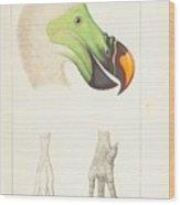 Collection De  Wood Print