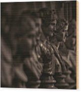Collection Of Roman Sculptures #2 Wood Print
