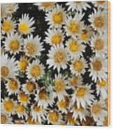 Collective Flowers Wood Print