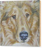 Collie Close Up Wood Print