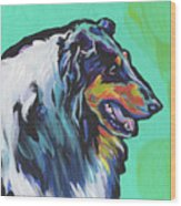 Collie Collie Wood Print
