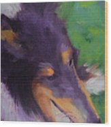 Collie Girl Siena Wood Print